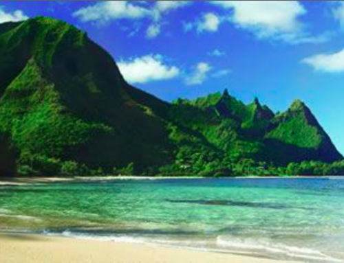2014 Hawai'i Tourism Economy Should Surpass 2013