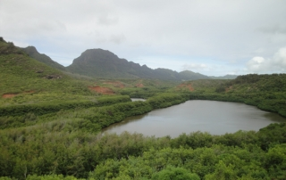 The Alakoko Fishpond, also known as Menehune Fishpond, is seen here surrounded by red mangrove.