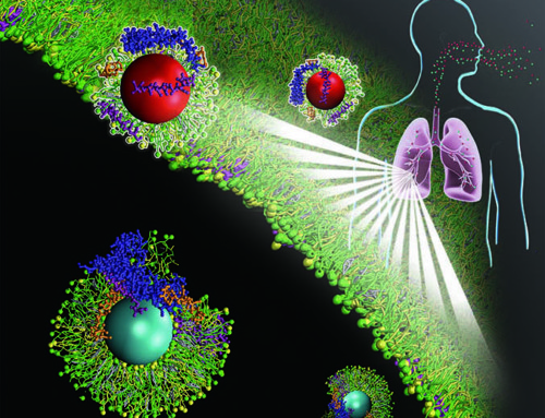 UH Scientist Reveals New Biological ID of Inhaled Nanoparticles