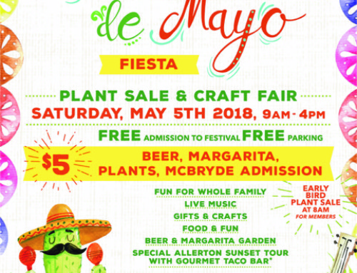 Cinco de Mayo Fiesta at NTBG
