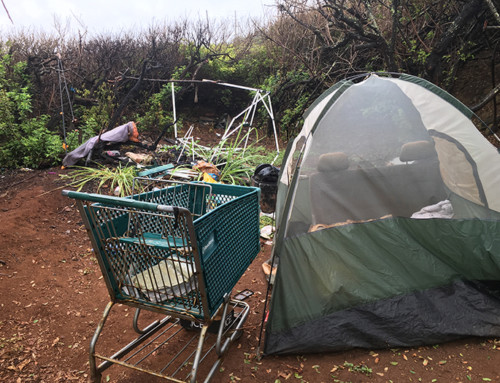 KPD Operation Leads to Arrests, Removal of Illegal Kapa'a Campsites