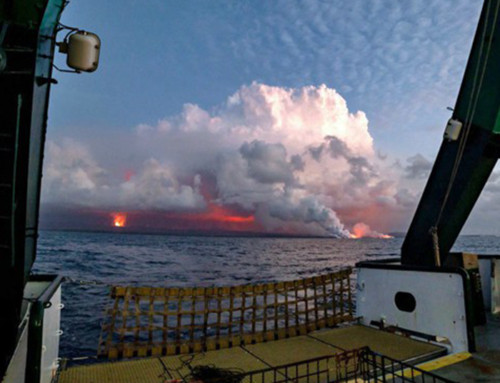 UH Studying Effects of Kīlauea Eruption on Ocean Ecosystem