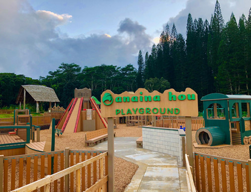 Anaina Hou Playground Built with Recyclables Officially Opens