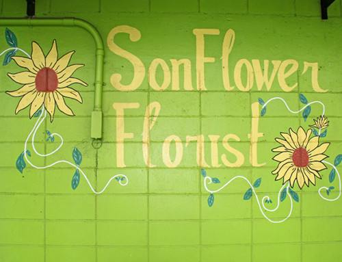 Sonflower Florist & Gifts