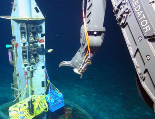 Unusual Microbes from Deep-Sea Hold Clues to Early Life