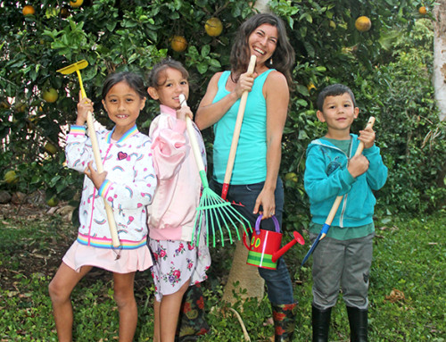 Farm to Keiki — Cooking, Gardening and Nutrition with Children