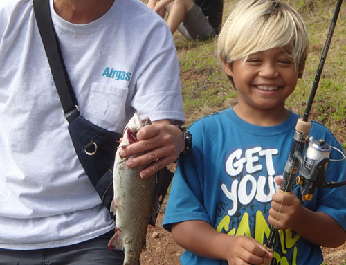 Koke'e Rainbow Trout Season Opens Saturday