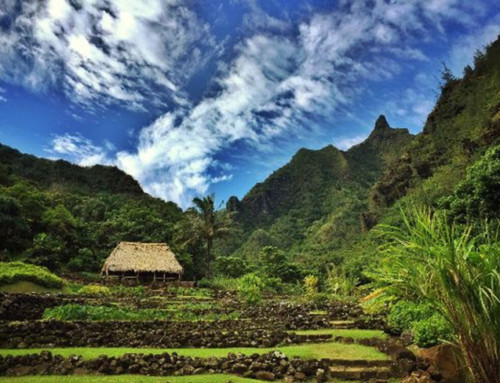 Limahuli Garden and Preserve Opens to the Public
