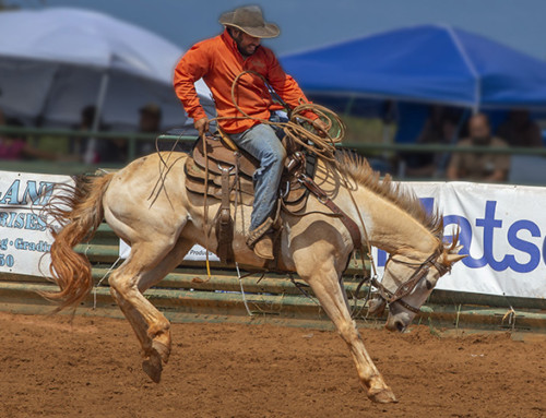 Family Fun at the 20th Annual Koloa Planation Days Rodeo