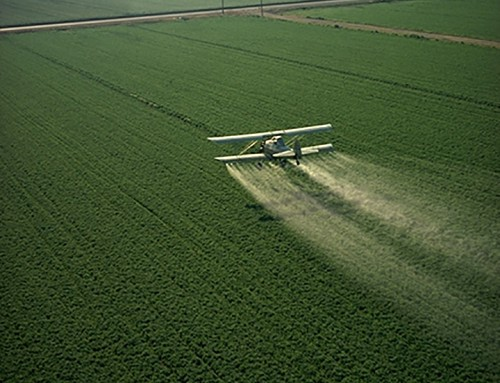 UH Study: Pesticides May Contribute to Heart Disease