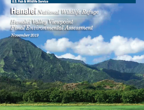 USFWS Announces Final EA for the Hanalei Valley Viewpoint Project
